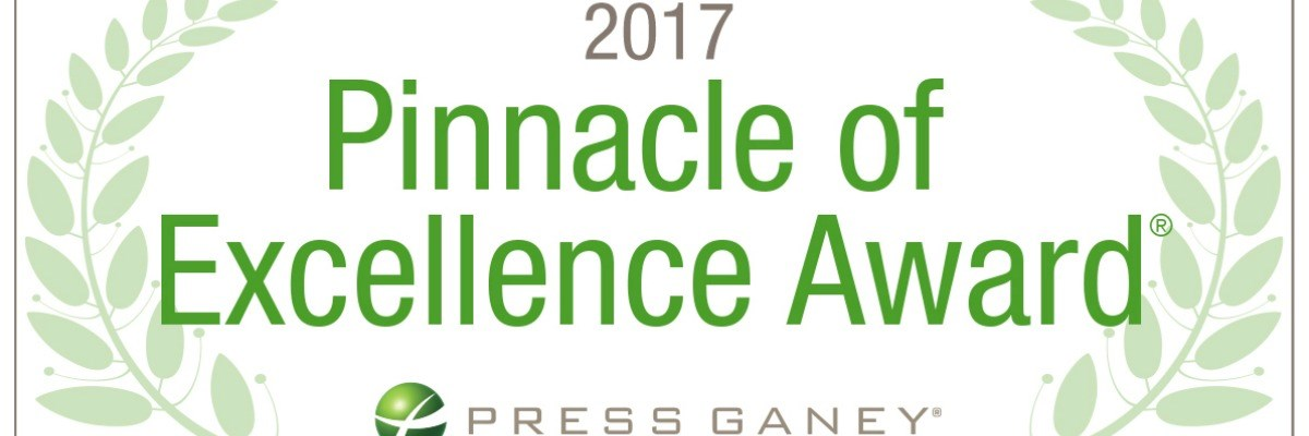 Named a 2017 Pinnacle of Excellence Award® winner